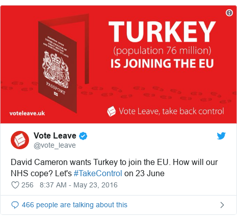 uk-politics-voteleave-turkey